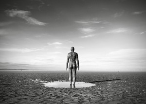 Gormley 1 fin web