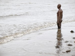 Gormley 4 fin web