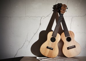 Two Ukes text Grunge FIN web